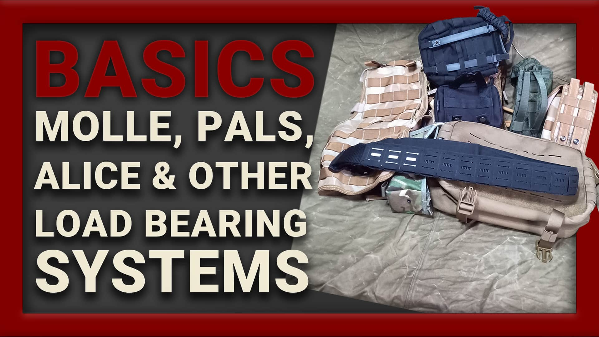 BASICS-Molle-pals-alice-other-load-bearing-systems-militariageneral-in-english